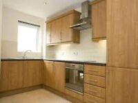 lovely Spacious two bedroom two bathroom apartment in E15 with parking