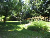 cute 3 Bedroom with huge yard for July 1 newly renovated