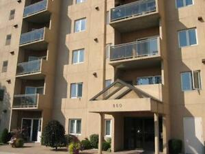 Modern Large 1 bedroom condo next to Victoria Hospital