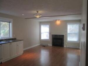 2 Bedroom Lower Suite- $135 Flat Rate- Triangle Mtn.