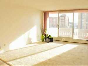1 month FREE! 2 Bedroom in Downtown Highrise - Pets Welcome!