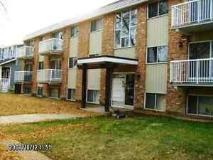 LARGE 1 bedroom suite - Avail Jun - 80 Ave
