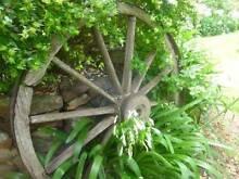 dray wheel Deepwater Glen Innes Area Preview
