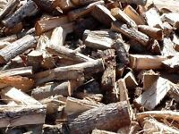 ******Free firewood to give away clearance also big logs ********