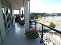 %^&%^& LOVELY OCEANFRONT CONDO-PARKSVILLE %^&%^&