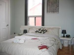 Furnished Downtown Rooms & Suites