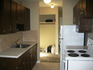 1 bedroom downtown Avail June 1st 114th