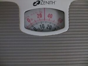 Zenith Scale London Ontario image 2