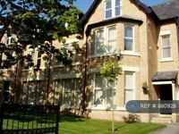 1 bedroom flat in Linnet Lane, Sefton Park, Aigburth, Liverpool, L17 (1 bed) (#880928)