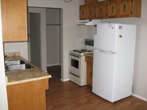 #251-402 - 2 Bedroom Apartment in Avondale $850H/W Avail May 1st