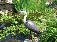 Looking for fake heron/crane for pond