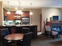 Fully Furnished Canmore Units - 2 Bedrooms, 2 Bathrooms