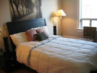 Furnished Downtown Rooms and Suites