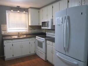 Clean and Updated Student Rental, 1 room left !  All male house
