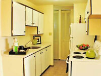 Downtown 1 Bed Suite, Great Views, Storage, Parking,Gym, Sauna
