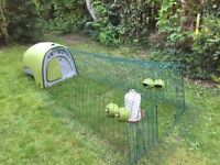 Green Omlet Eglu Chicken Coop with Run and Utensils