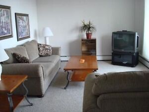 1 Bedroom Fully Furnished Apartment - Close to Downtown