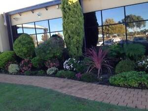 Instant lawn and Landscaping Services Caversham Swan Area Preview