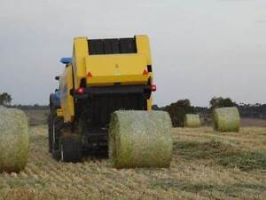 Hay bale rolls for sale, new season, excellent quality Lethbridge Golden Plains Preview