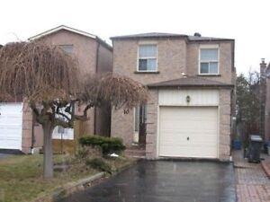 Basement for Rent- Scarborough Close to U of T campus