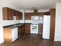 3 Bedroom Suite in Smith Subdivision $1300 Avail. Dec 1st #3914