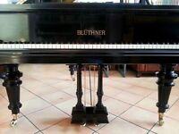Bluthner Baby Grand Piano | Free UK Delivery