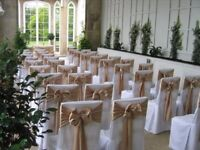 Wedding Chair Sashes for Sale
