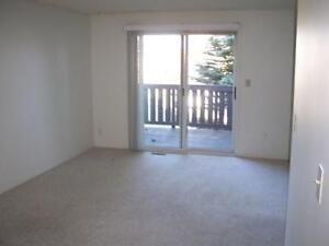 Great Location 2 Bedroom Pet Friendly 4 plex Desirable Clearview