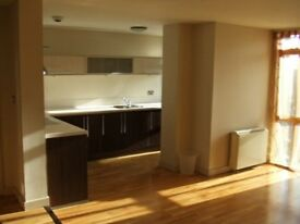 Huge double bed room w/ensuite in 2 bed flat Bristol city center 120 0p/w available 5th july-2nd Sep