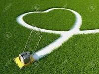 Power Rake, Aerate, Lawn & Gardening Services