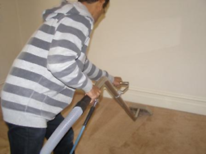 Carpet and Upholstery Cleaning Service-starts from $50