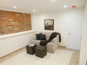 High Park/Junction Newly Renovated  Bachelor Basement