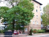 WHITECHAPEL, E1, BRIGHT 3 BEDROOM APARTMENT AVAILABLE IN JULY