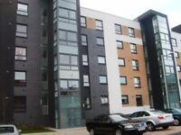2 Bedroom ground floor furnished flat to rent on Firpark Court, Dennistoun, Glasgow East End