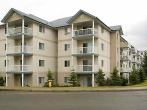 SUITE SPECIALS EVERYWHERE! 1 AND 2 BEDROOMS AVALIABLE! Edmonton Edmonton Area image 1