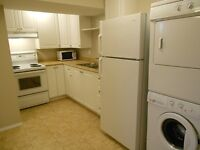 1 Bedroom Lower Level in Sexsmith $650 Avail. Now#115