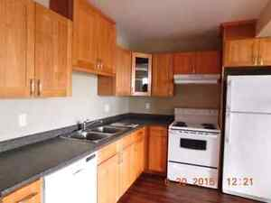 1-BED RENjOVATED -Avail Feb 1st 144ave