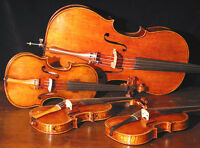 String Teacher- Violin, Cello, Viola