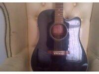 Walden D350ceb Electro Acoustic Guitar