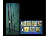 VINTAGE D.A.M. 'MINOR MATCH' 10ft FLY FISHING RIVER ROD - FOR SALE
