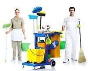 ** Cleaning Service Team : Condos, Appartements and Houses