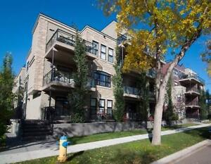 Newer and Affordable condo Near U of A
