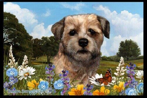 Summer Floor Mat - Border Terrier 39122