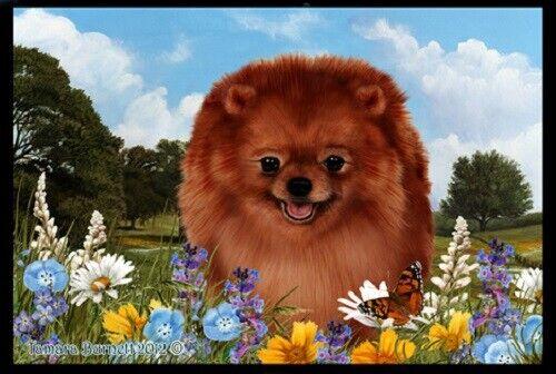 Summer Floor Mat - Red Pomeranian 39013