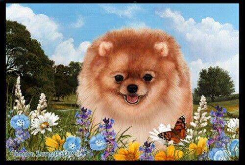 Summer Floor Mat - Orange Pomeranian 39311
