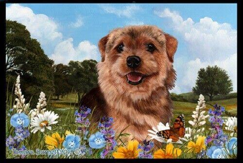Summer Floor Mat - Norfolk Terrier 39225