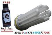 Dual Spectrum CFL