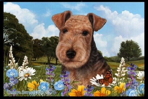 Summer Floor Mat - Lakeland Terrier 39234