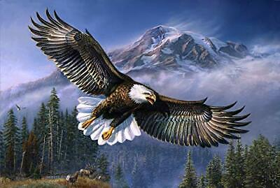 """""""American Anthem """" Throw Blanket with Sherpa Lining 50""""x60"""" / USA Eagle for sale  Livermore"""