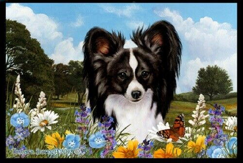 Summer Floor Mat - Black and White Papillon 39078
